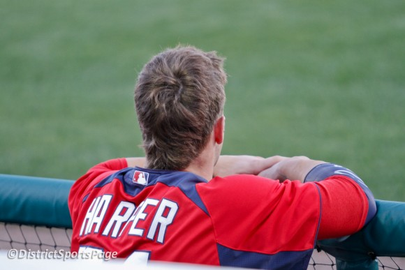 Bryce Harper watching game from the dugout during spring training (Cheryl Nichols/District Sports Page)