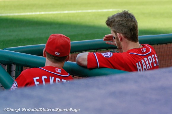 Bryce Harper soaking up every last bit of information from hitting coach Rick Eckstein - Los Angeles Dodgers v. Washington Nationals, Game One of Doubleheader on September 19, 2012 (Cheryl Nichols/District Sports Page)