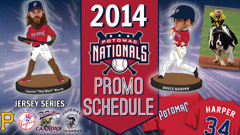 Source: Potomac Nationals home page